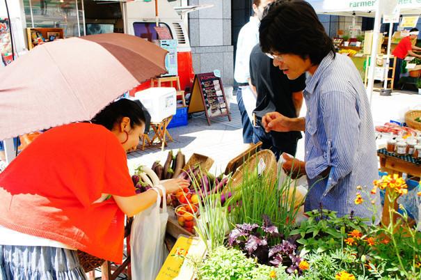 千葉/植物自由区