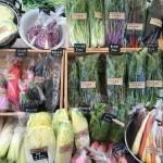 静岡/やさし菜農園 Tanizaki