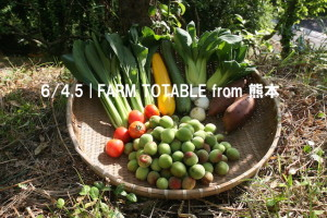 Farm to Table from 熊本 & Disco Soup