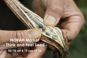 2/18&19|NORAH Market ーThink and Feel Seedー