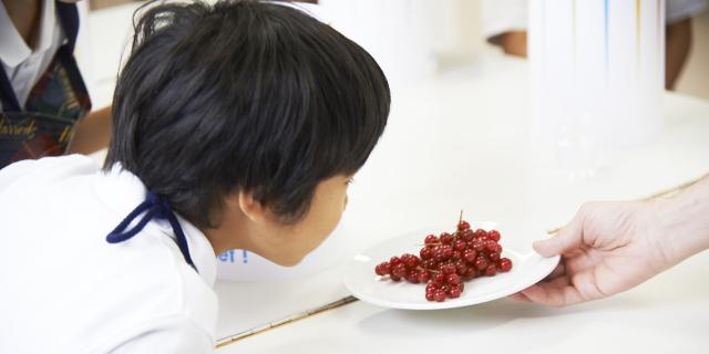 シェフと一緒に5つの味の大冒険!|10/17土