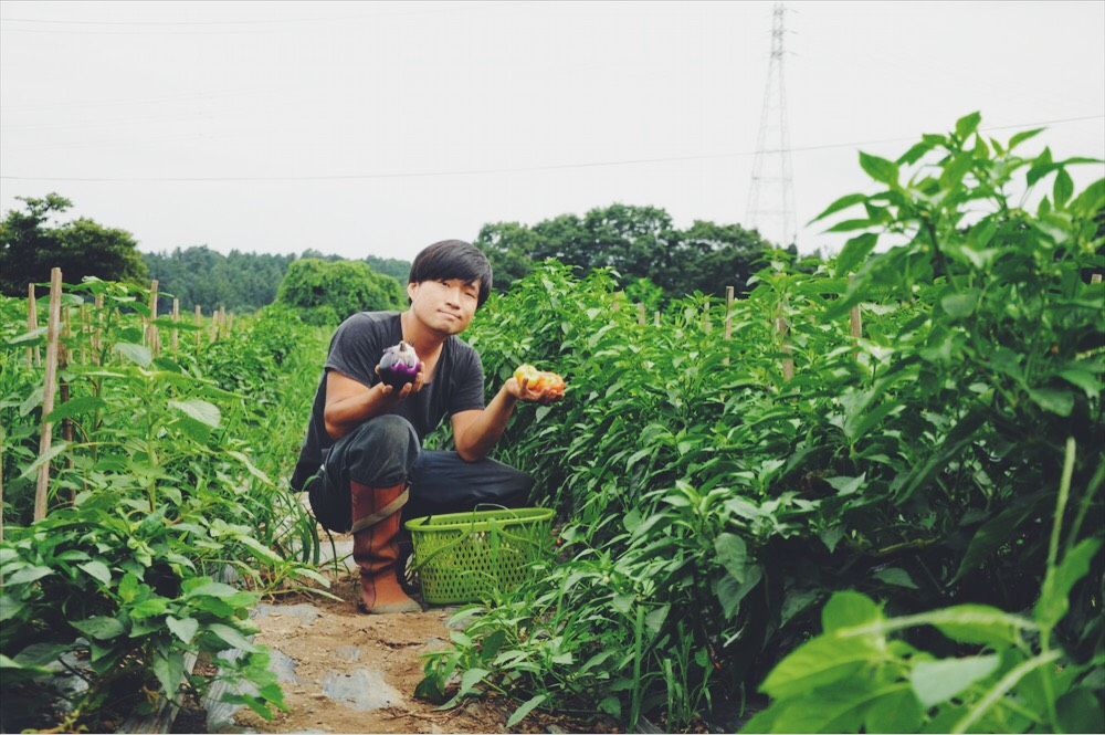 Mucu Farm