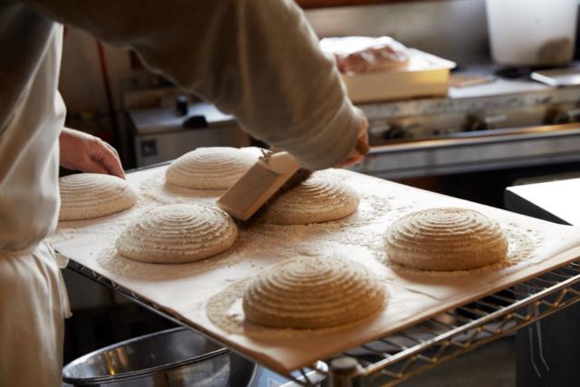 10/14&10/15|青山パン祭り- Craft Bakeries –