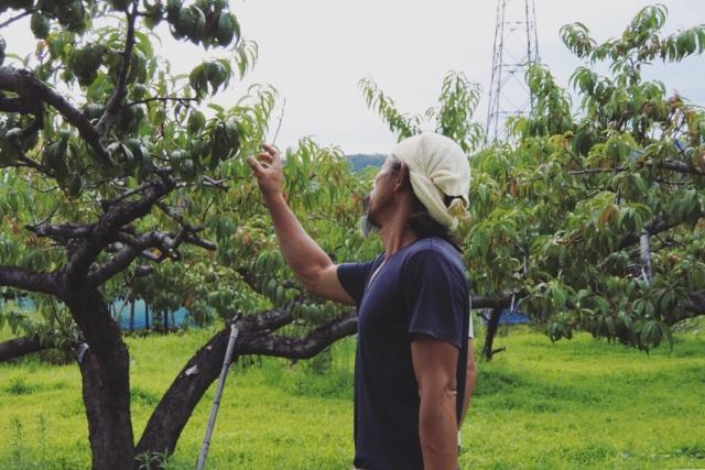 【Farm Report】山梨・然企画 〜動物たちと生み出す、自然にやさしい素材と環境〜