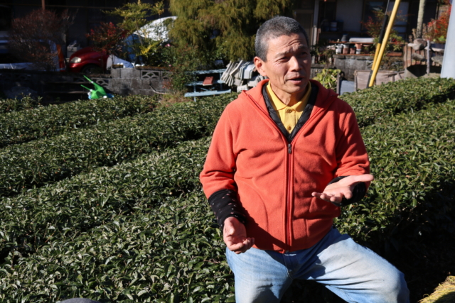 【Report】Farm Tour|緑茶から発酵茶まで、15種以上の茶葉を生み出すお茶農家。静岡・益井園