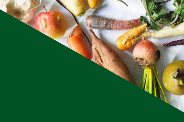 【NEW】ファーマーズマーケットの場を越えて。オンライン共同購入&ピックアップの取り組みをスタート Expanding the farmers market beyond UNU: Buy online and pick up
