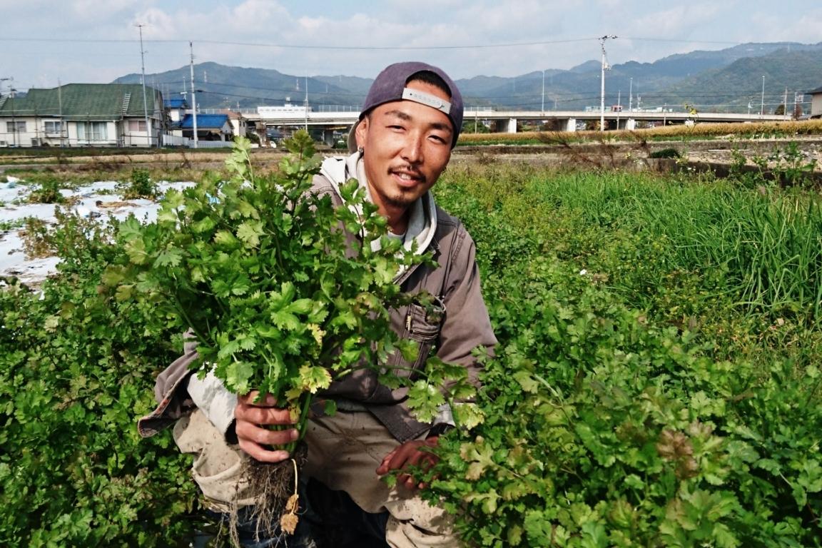 愛媛 / ethnic green farm廣川農園